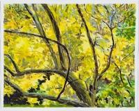 Feuillage jaune et tronc noir