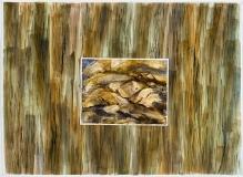 Écorce et roches blondes