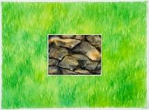 Roches sur herbe droite